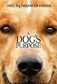 View details for A Dog's Purpose